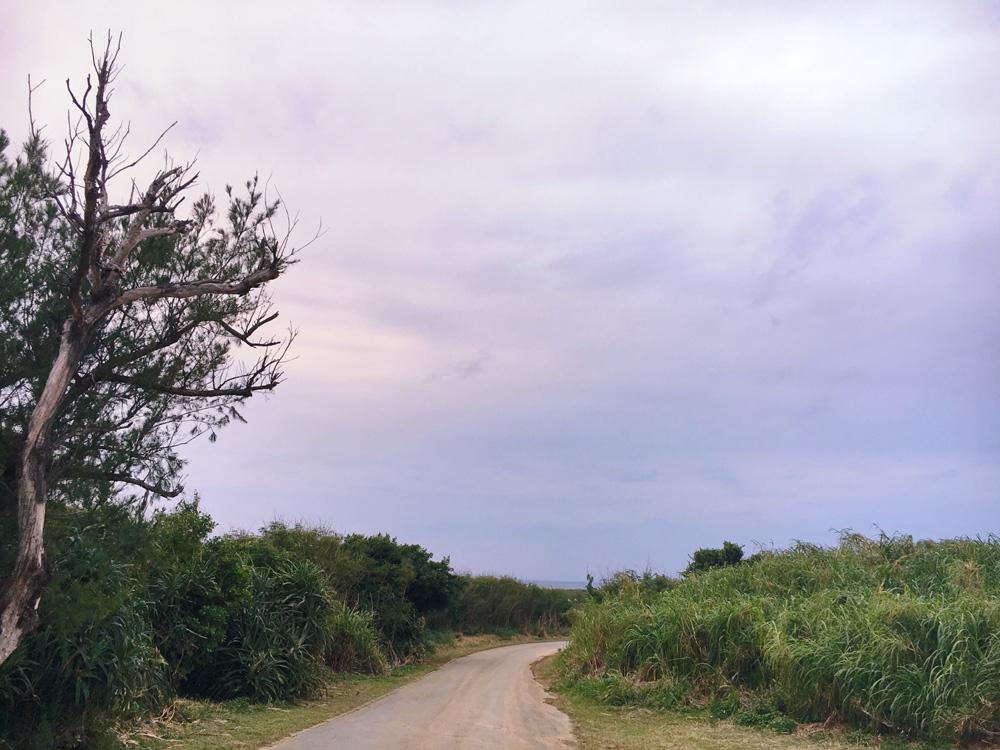喜屋武岬への道