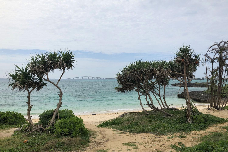親泊の浜から眺める伊良部大橋