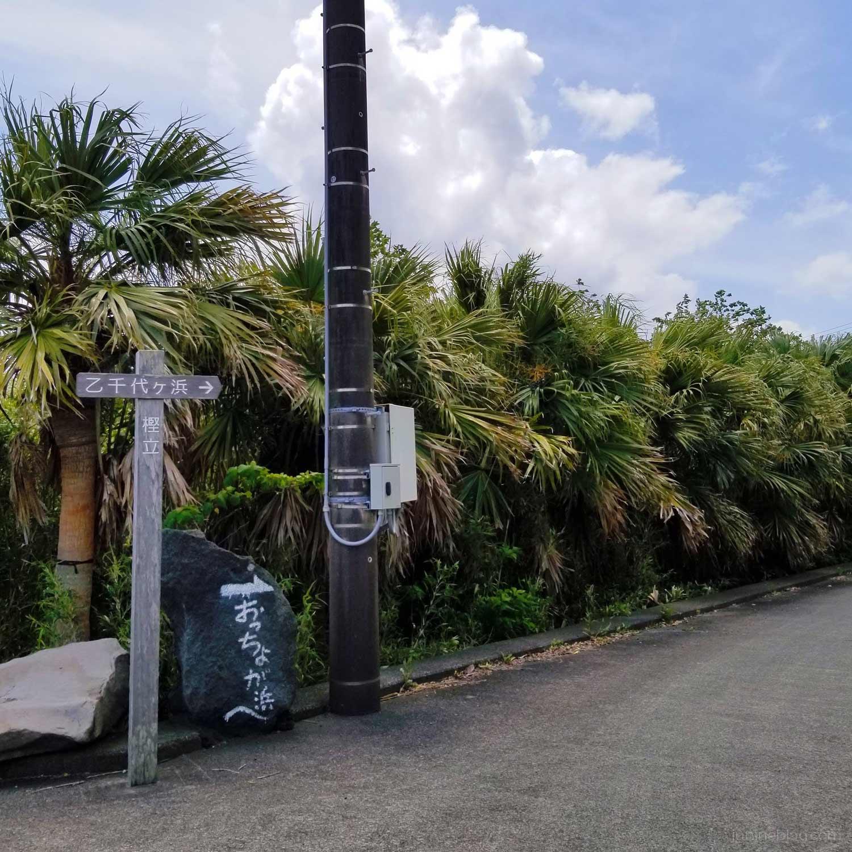乙千代ヶ浜への道