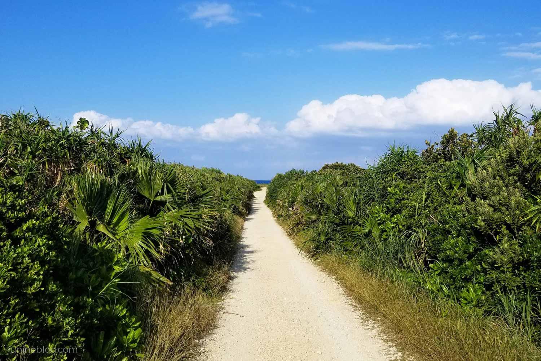 久高島カベール岬への道