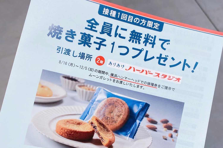 ハンマーヘッドでの焼き菓子無料配布チラシ